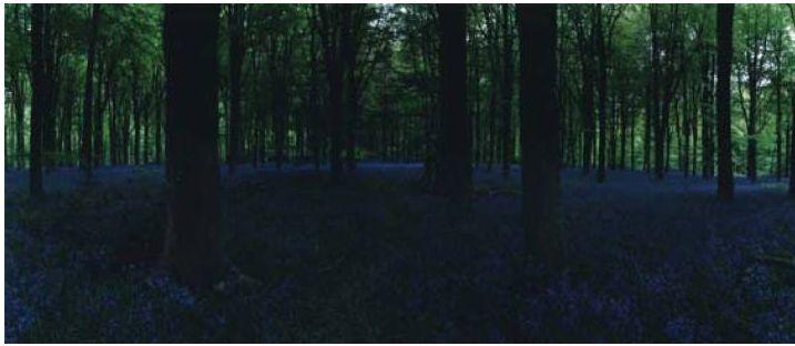 Chrystel Lebas, Blue Hour,
