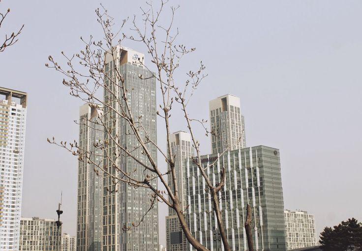 Songdo - Miasto Przyszłości. Jak wygląda prawdziwie rozwinięte miasto według Koreańczyków? Czy jest w stanie konkurować m.in. z Szanghajem? #Songdo #MiastoPrzyszłości #Blog