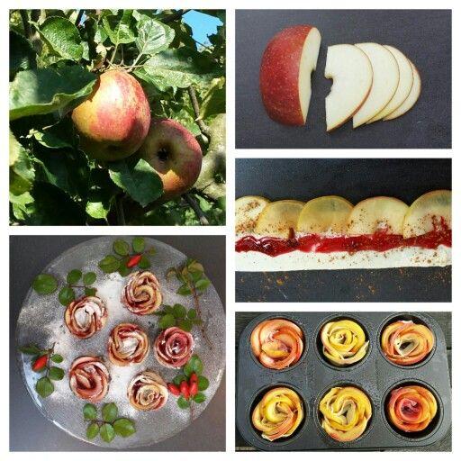 ☆ APPELROZEN Ingrediënten: - 2 appels - sap van een halve citroen + water - 3 plakken bladerdeeg - jam - kaneel Bereidingswijze: Oven op 175°C.  Maak dunne partjes van de appel (zie foto) en in verdund citroenwater 3 min. in magnetron. 3 Plakken bladerdeeg op elkaar uitrollen en stroken maken (6 cm). Jam erop en partjes dakpansgewijs op de lange zijde (zie foto). Bestrooien met kaneel. Bladerdeeg over de lengte dubbelvouwen en losjes oprollen. Appelrozen in een muffinbakblik. 35-45 minuten…