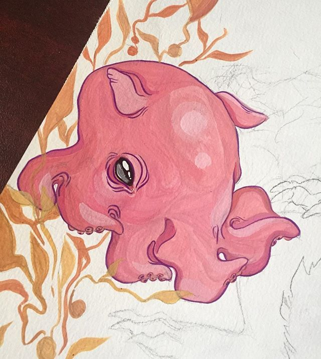Cute dumbo octopus - photo#54