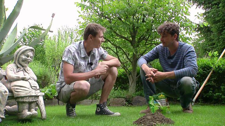 Hnojivo odpudzujúce krtkov.