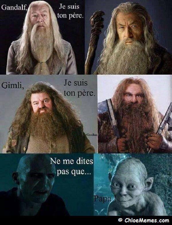 Et si Golum était le fils de Voldemort?Mais Golum il a un nez au moins lui
