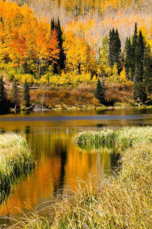 Otoño en Silver Lake, Brighton, Utah