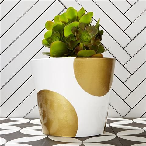 Mood Board Monday {The Bandwagon} - Gold Circle Pot - Kmart