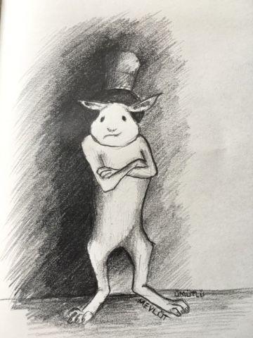 eskizlerim: Sihirli tavşan