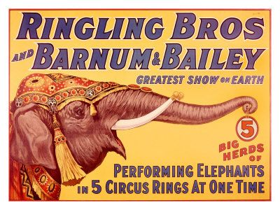 Google Image Result for http://imagecache2.allposters.com/images/pic/VAS/0000-5234-4~Ringling-Bros-Circus-Performing-Elephant-Posters.jpg