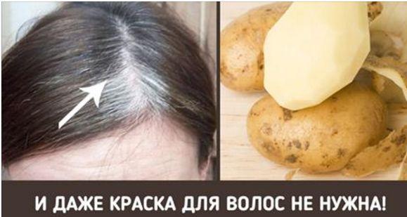 Помойте седые волосы этим средством — и вас ждёт сюрприз!