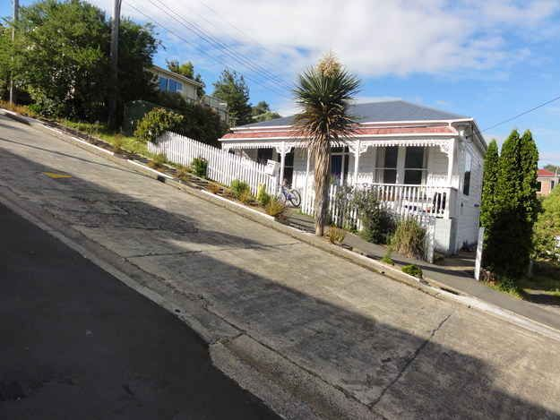Baldwin Street, Dunedin NZ, the steepest street in the world.