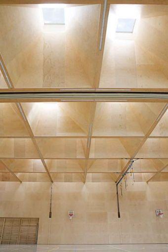 Innovatives Lichtkonzept für Sporthalle in Vorarlberg