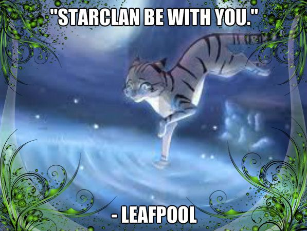 warrior+cats   Warrior Cats Forever LeafPool
