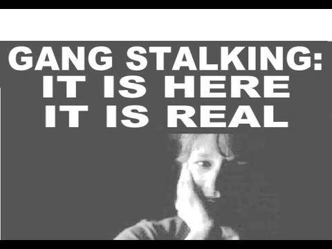 Lena Kochman: Gang Stalking Victim?