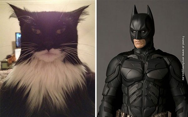 Real life versions of your favorite cartoons (23 pictures)