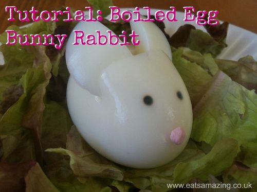Eats Amazing - Boiled Egg Bunny Rabbit Tutorial