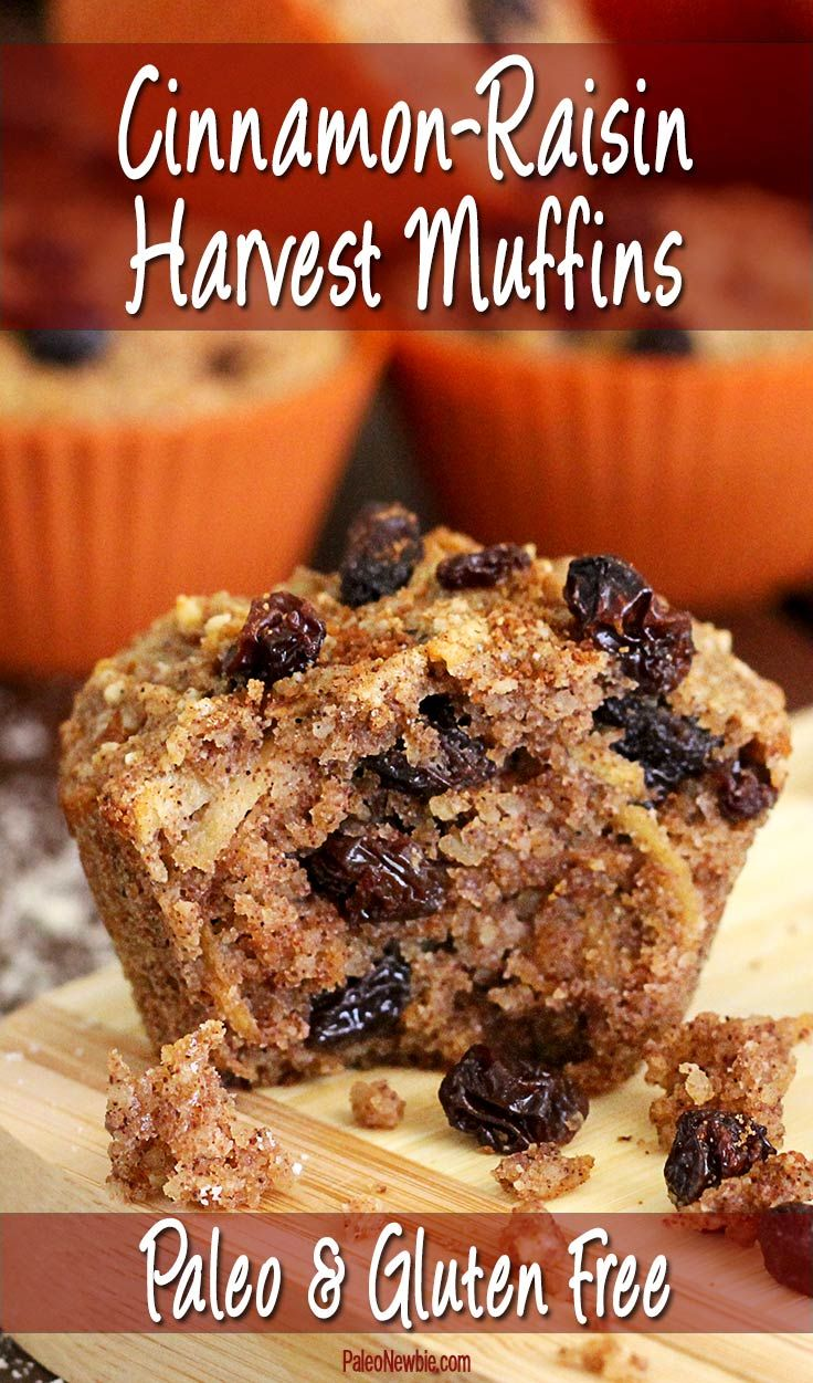Fall is still a ways away, but it's never too soon to fill your kitchen with the aroma of these moist and delicious paleo and gluten-free muffins! #paleo #glutenfree #muffins
