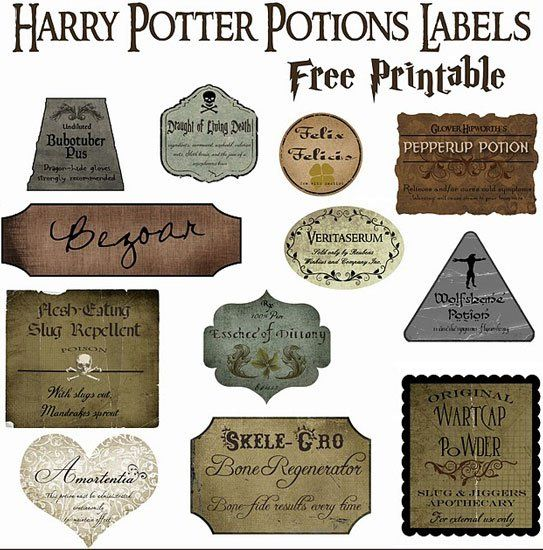 Everything You Need For a Magical Harry Potter Halloween Party Make Your Own Potions Decor