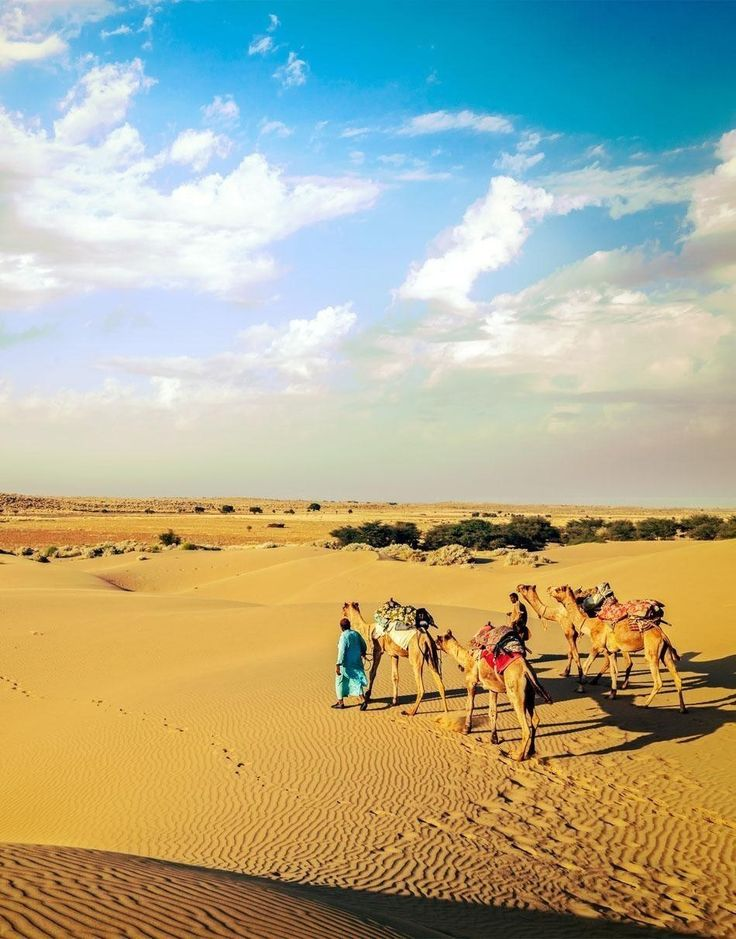 Dunes of Thar desert. Jaisalmer, Rajasthan, India | 10 Experiences not to miss while in India