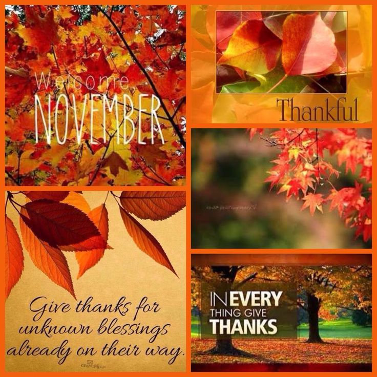 35 best Thankfulness A-Z images on Pinterest | Thankful for ...