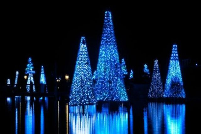 The Best of Christmas in Florida, More Magical than Ever