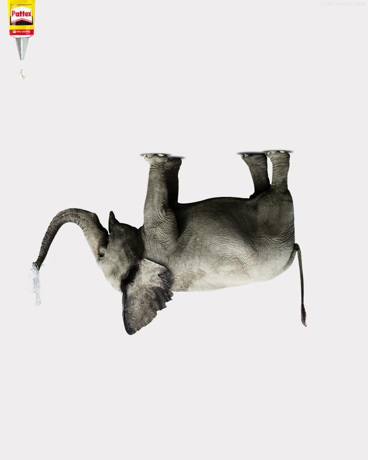 Elephant ad, publicidad. By Max Palma, Chile. - www.maxpalma.cl