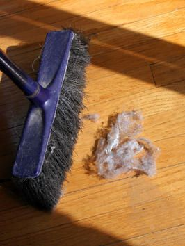 Tips on how to keep the dust down in your home.  Very Helpful.