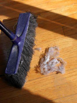 HGTV tips on minimizing dust