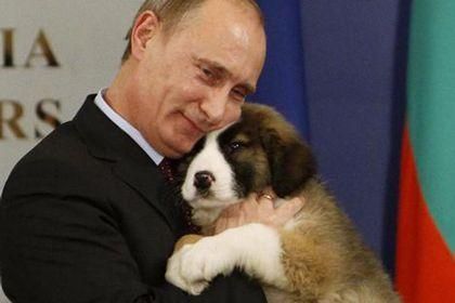 Putin does it again