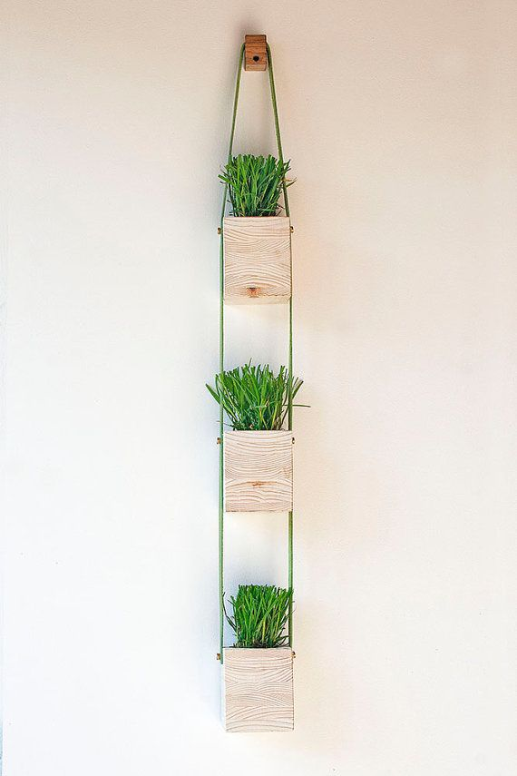 die besten 25 wand pflanzer ideen auf pinterest wohnung pflanzen kr uterwand und botanische. Black Bedroom Furniture Sets. Home Design Ideas