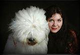 bobtail, Old english sheepdog,esposizioni canine,seminari,handler