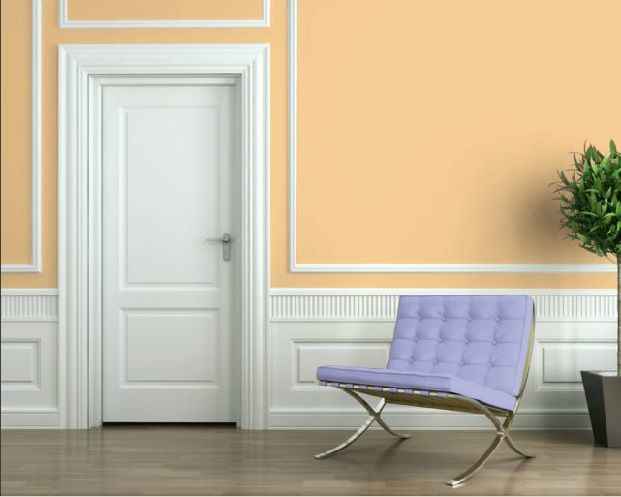 sw 6653 sherwin williams paint visualizer delicious melon for my. Black Bedroom Furniture Sets. Home Design Ideas