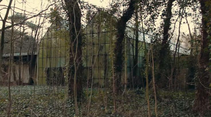 Dierenpark Wassenaar, sinds 1985 gesloten.