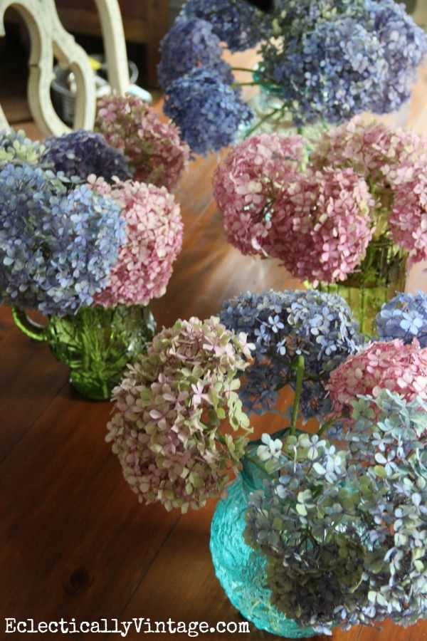How to dry hydrangeas - It is that time of year..to dry your Hydrangeas! They make beautiful accents tucked in Christmas trees and arrangements! Spray the dried hydrangea with a glitter spray for the holidays too! Instructions: http://eclecticallyvintage.com/2013/08/drying-hydrangeas-101/