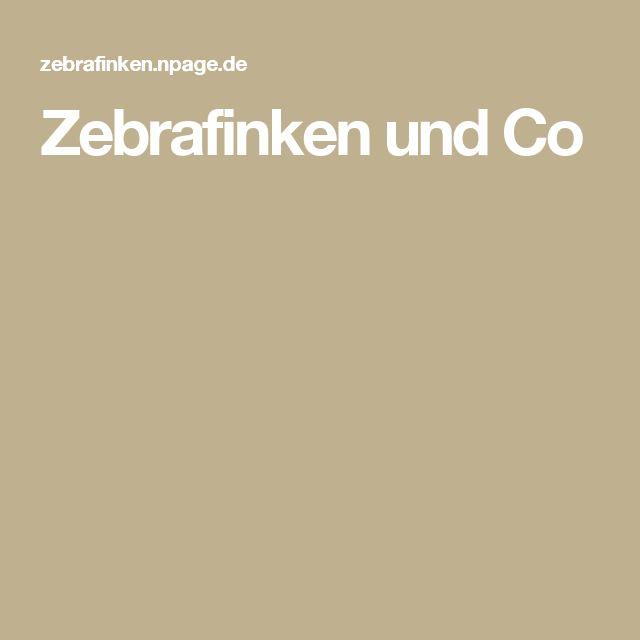 Zebrafinken und Co