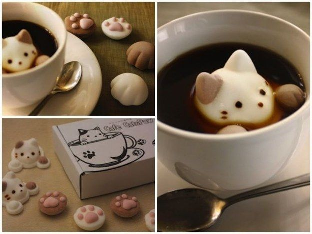 AND CAT-SHAPED MARSHMALLOWS TO PUT IN THAT MUG.