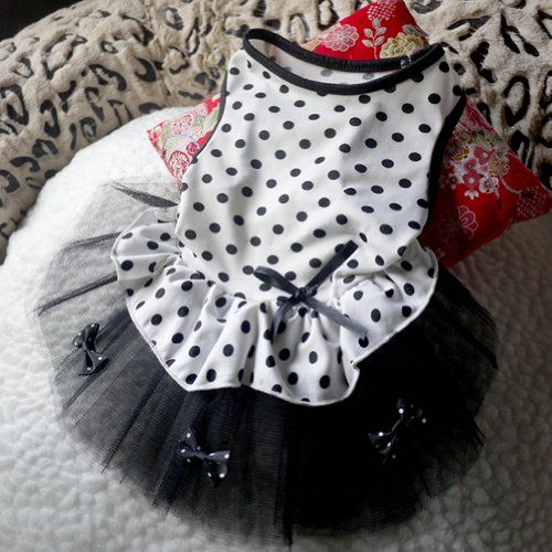 PanDaDa Pet Dog Cat Polka Dot Tutu Dress Puppy Bowknot Princess Clothes Lace Skirt White L ** Learn more by visiting the affiliate link Amazon.com on image.