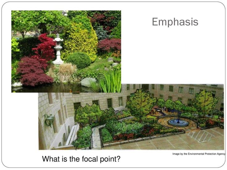 Image result for landscape focal point examples | Focal ...