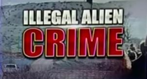 The federal government has simply lied straight to our faces about immigrant crime statistics and this has been happening for years. President Trump is fulfilling another campaign promise by releasing the numbers that the Obama administration, the open borders Democrats, and the surrender-first RINO