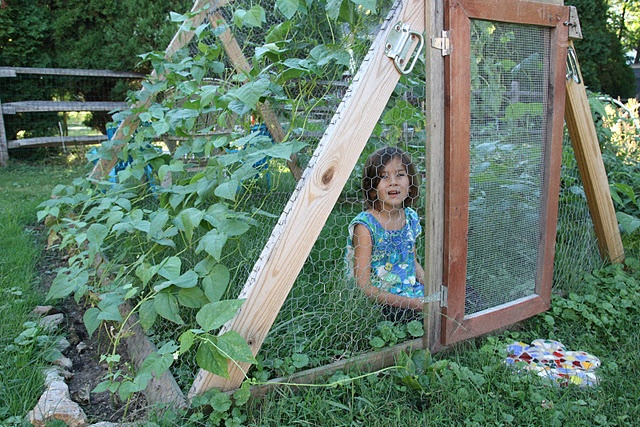 bean hut extraordinaire.  Who could make this for preschool?: Beans Huts, House Ideas, Sunflowers House, Neat Ideas, Almighty Beans, Cubbies House, Mr. Beans, Kid, Fall Gardens