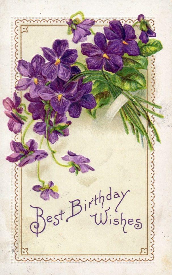 С днем рождения открытка с фиалками, картинки