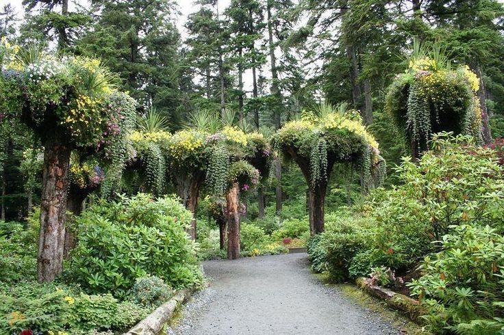 Ледниковые Сады – #Соединённые_Штаты_Америки #Аляска (#US_AK) Вот такой необычный сад из перевернутых корнями вверх деревьев, погубленных оползнем, создали на Аляске ландшафтные дизайнеры Стив и Синди Боухей. http://ru.esosedi.org/US/AK/1000100354/lednikovyie_sadyi/