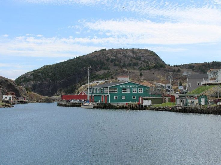Newfoundland is becoming an increasing popular destination for travelers – and, with good reason. From breathtaking scenery to fascinating wildlife…