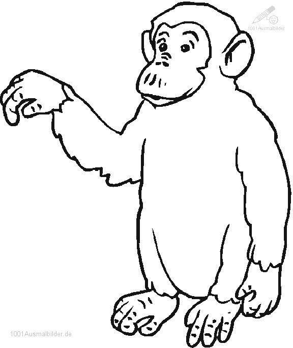 Affe Ausmalbild Ausmalbilder Fur Kinder Ausmalbilder Coloring