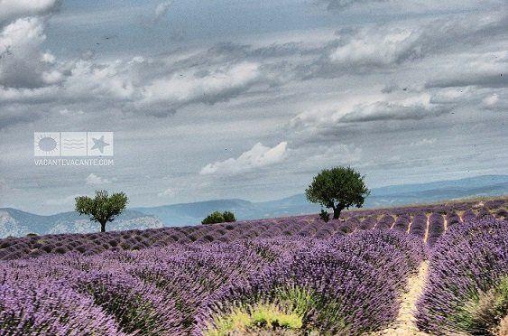 Cele mai frumoase sate din Provence | Vacante! Vacante!