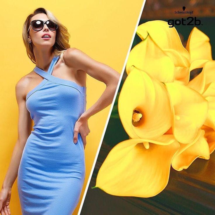 Девушки нуждаются в трех вещах: доброте, заботе и новом платье.