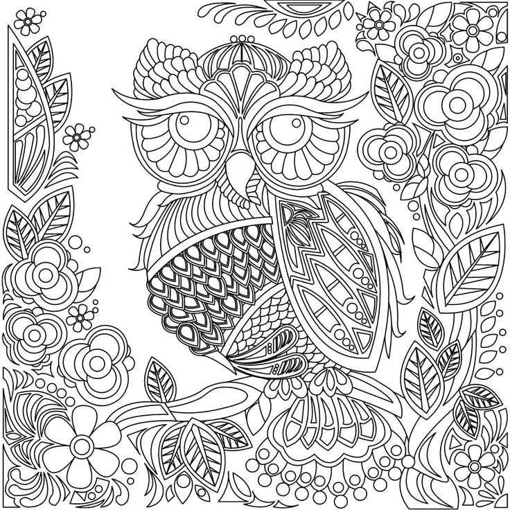 zentangle owl coloring pages - photo#5