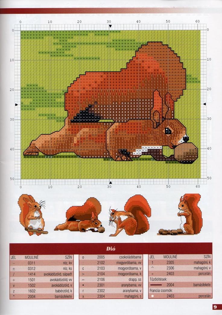 Part 03 - Squirrel (total 5 parts)