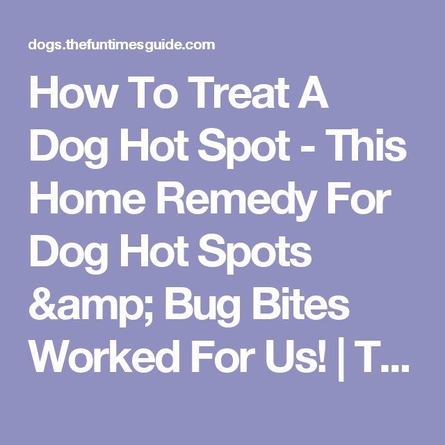 Dog Hot Spot Treatment Benadryl