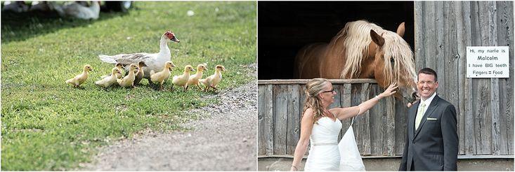 Ottawa wedding photographer Stacey Stewart_0776.jpg