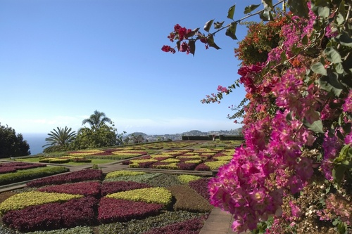 The most wonderful garden on the island!