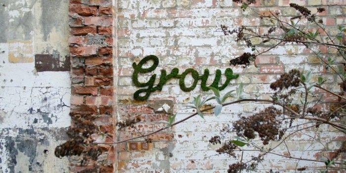 mit moos dekorieren fruelingsdeko naturmaterialien moos graffiti schriftzug gestalten mit moos