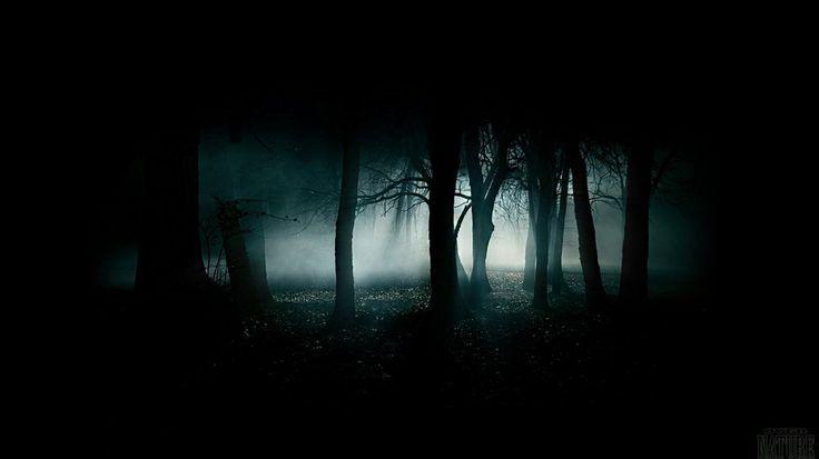 Wallpaper con un buio, cupo crepuscolo dim foresta abitata